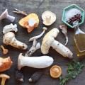 fresh_wild_mushroom_mix