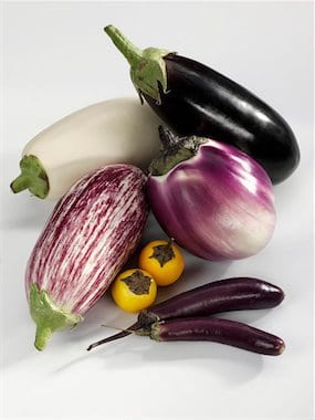 659-01855048 Model Release: No Property Release: No Various types of aubergines