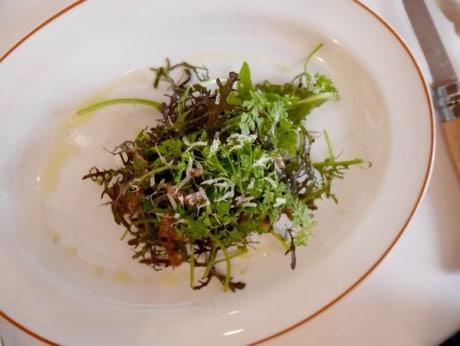 Alain-Passard-avril-2015-salade-dherbes