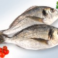 poisson-chinchard