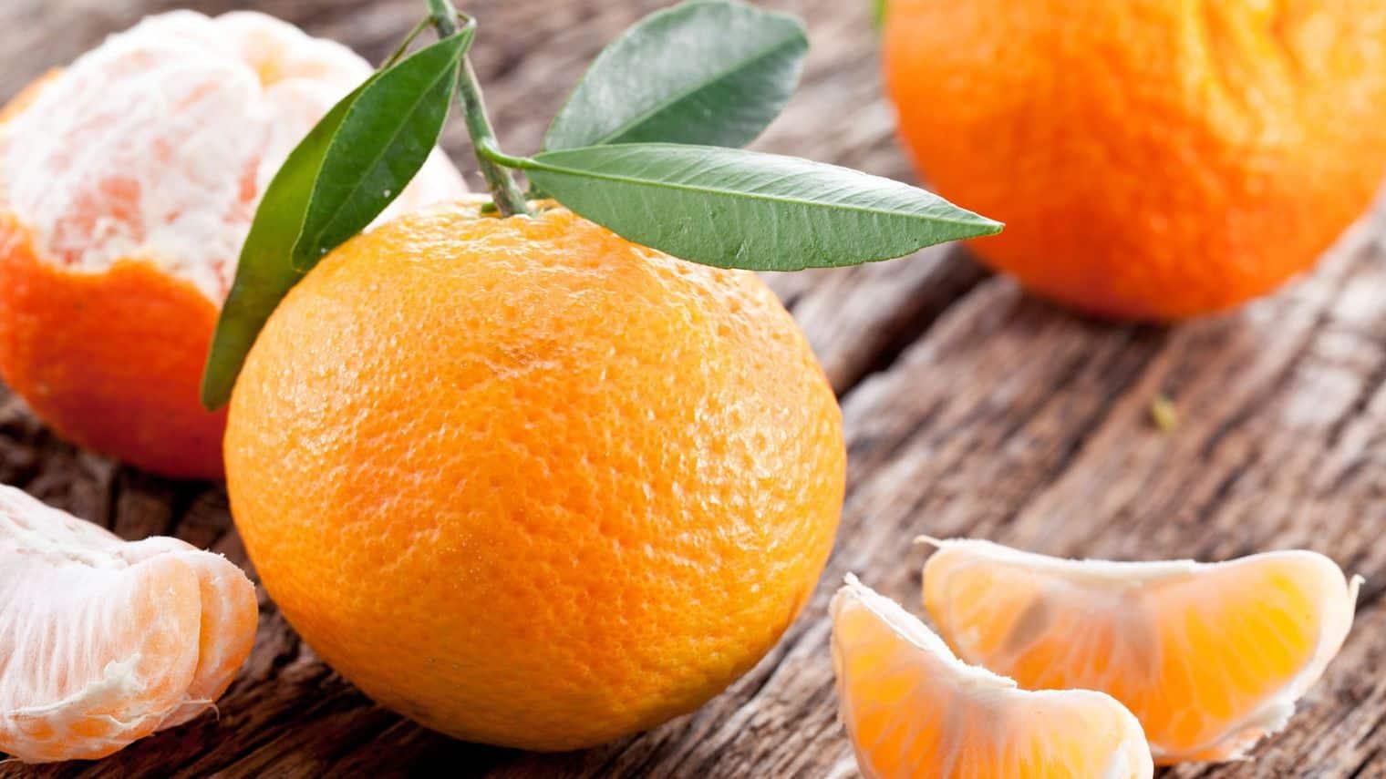 clementine-et-mandarine_4537842