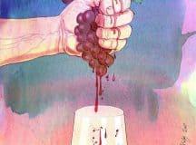 O que é vinho natural e porque ele é uma enorme tendencia mundia