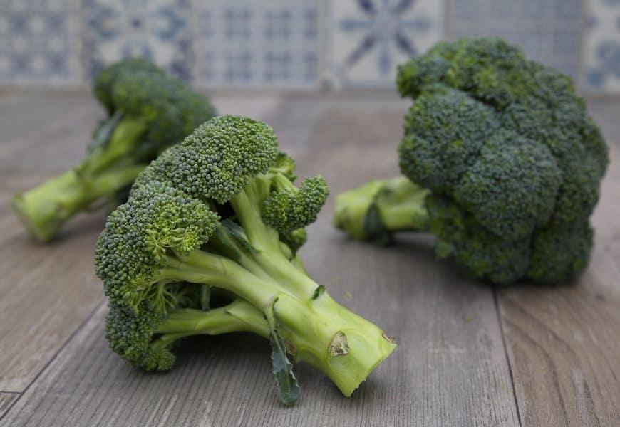 Brócolis, tudo o que você precisa saber