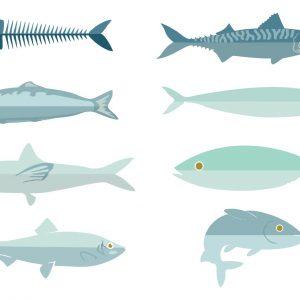 Guia do Consumo de Peixe Sustentável